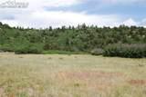 Peakview Ridge - Photo 36