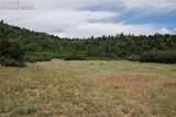 Peakview Ridge - Photo 37