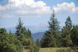 Peakview Ridge - Photo 43