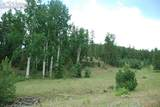 Peakview Ridge - Photo 5