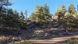 203 Apache Road - Photo 5