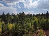103 Lake Circle - Photo 32