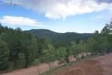 1577 Pikes Peak Drive - Photo 6