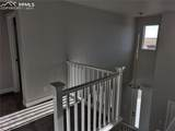 10157 Vervain View - Photo 14