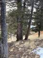 63 Dillon Lake Circle - Photo 2