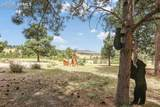 17410 Prospector Drive - Photo 42