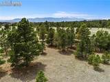 8580 Forest Line Way - Photo 1