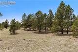 8580 Forest Line Way - Photo 11