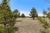 8580 Forest Line Way - Photo 15