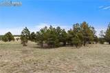 8580 Forest Line Way - Photo 17