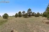 8580 Forest Line Way - Photo 18