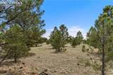 8580 Forest Line Way - Photo 7