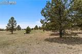 8580 Forest Line Way - Photo 9