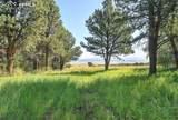 4928 County Road 125 - Photo 40