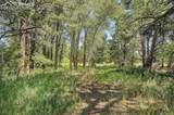 4928 County Road 125 - Photo 41