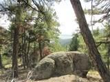 13948 Boulder Lane - Photo 31
