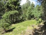13948 Boulder Lane - Photo 39