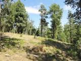 13948 Boulder Lane - Photo 47