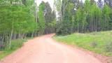 10701 Highway 67 Highway - Photo 15