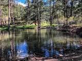 620 Adobe Creek Road - Photo 33