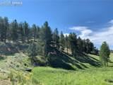 218 High Pasture Road - Photo 3