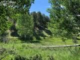 218 High Pasture Road - Photo 8
