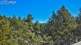 124 Trout Creek Drive - Photo 29