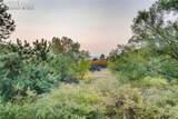 190 Winding Meadow Way - Photo 39