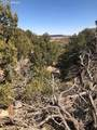 LOT 13 Red Creek Springs Road - Photo 19
