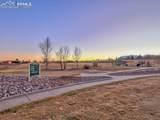 1329 Shenandoah Drive - Photo 48