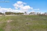 8782 Sanctuary Pine Drive - Photo 4