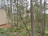 87 Chalk Creek Trail - Photo 10