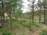 87 Chalk Creek Trail - Photo 11