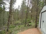 87 Chalk Creek Trail - Photo 13