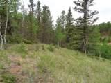87 Chalk Creek Trail - Photo 15