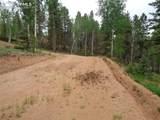 87 Chalk Creek Trail - Photo 16