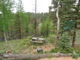 87 Chalk Creek Trail - Photo 17