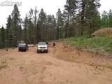 87 Chalk Creek Trail - Photo 18