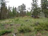 87 Chalk Creek Trail - Photo 2