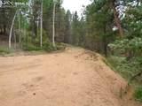 87 Chalk Creek Trail - Photo 20