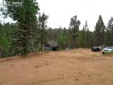 87 Chalk Creek Trail - Photo 22