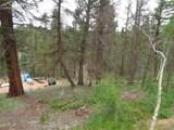 87 Chalk Creek Trail - Photo 23