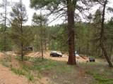 87 Chalk Creek Trail - Photo 24