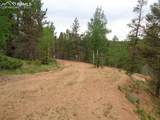 87 Chalk Creek Trail - Photo 25