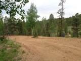 87 Chalk Creek Trail - Photo 26