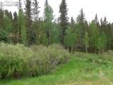 87 Chalk Creek Trail - Photo 27