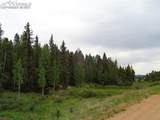 87 Chalk Creek Trail - Photo 28