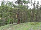 87 Chalk Creek Trail - Photo 3