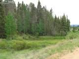 87 Chalk Creek Trail - Photo 30