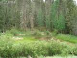 87 Chalk Creek Trail - Photo 32